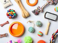 Accessoires & Objets pour chien